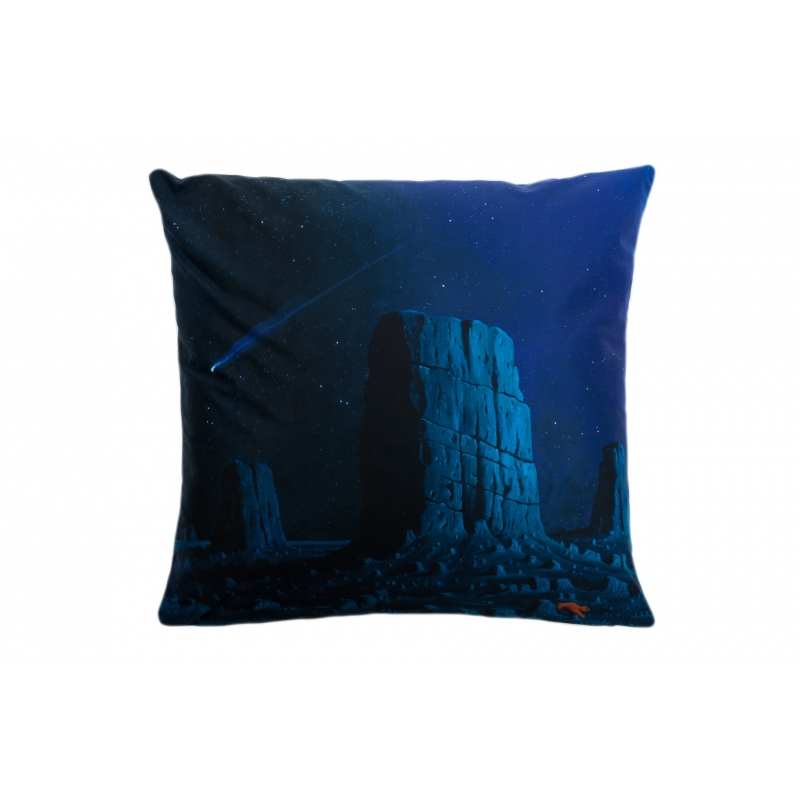 Decorative, Accent U0026 Throw Pillow: Not Every Falling Star Grants A Wish