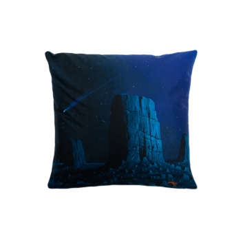 Decorative, accent & throw pillow: Not every falling star grants a wish.jpg