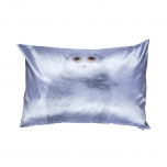 Decorative, accent & throw pillow:  The North wind does blow and we shall have snow